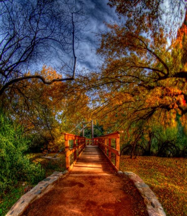 Beautiful Nature Image: مناضر خلابة للطبيعة 2014