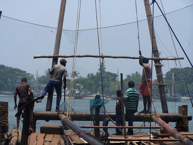Remontée des carrelets chinois à Fort Kochi