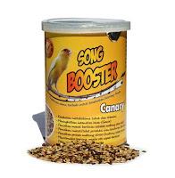 Pakan Burung Kenari Lomba Song Booster Canary