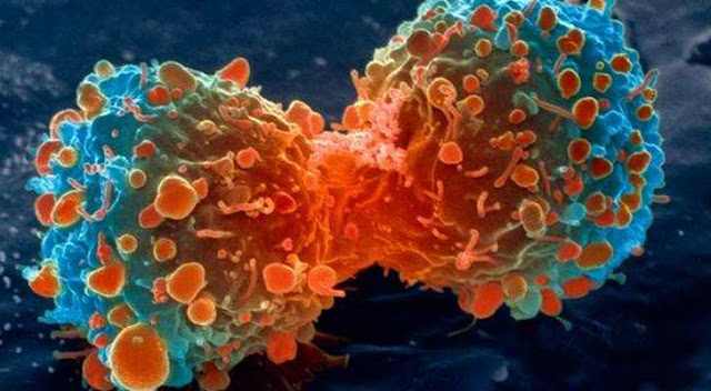 The Truth About Cancer is Revealed:Cancer is Man Made, Studies Confirm