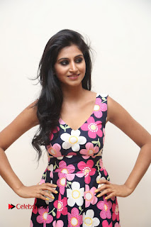 Model Shamili Latest Pictures in Floral Short Dress  0033.JPG