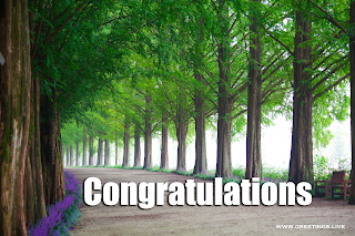 congratulations Wishes image woods Background.