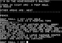 Pantallazo juego Softporn Adventure