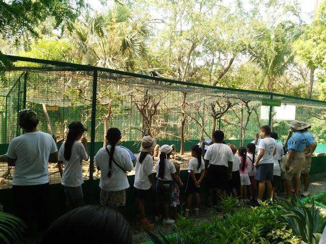 Visitan niños exploradores Unidad de Manejo Ambiental