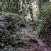 Mananciais da Serra podem ser visitados no fim de semana