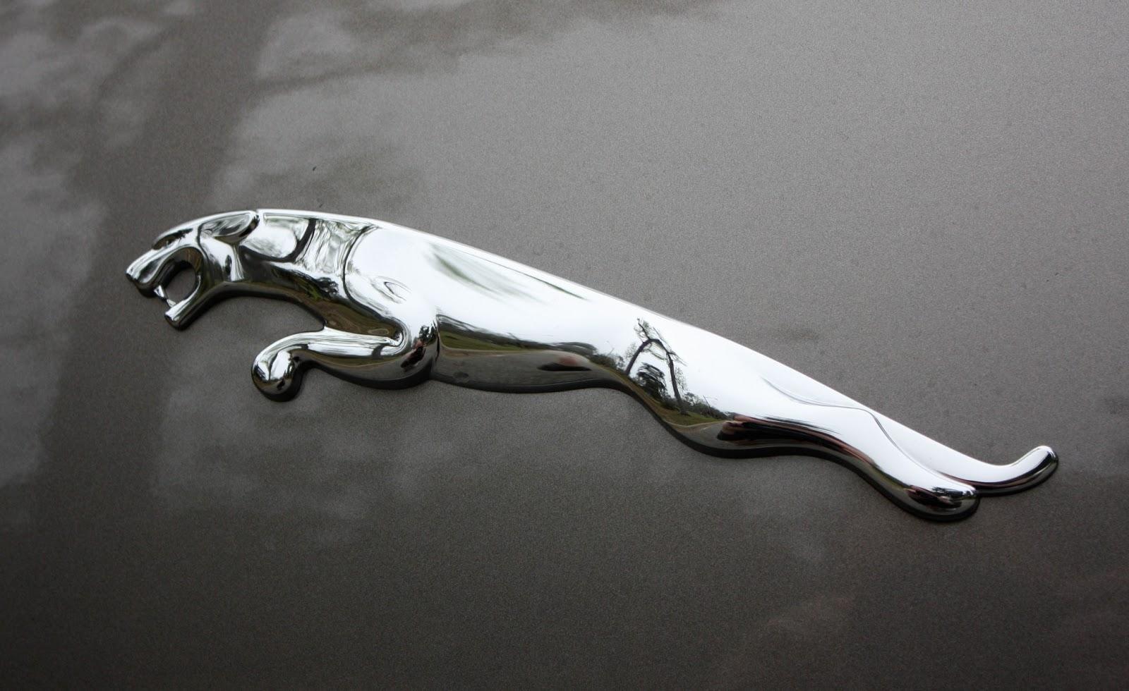 Dicas Logo Jaguar Logo