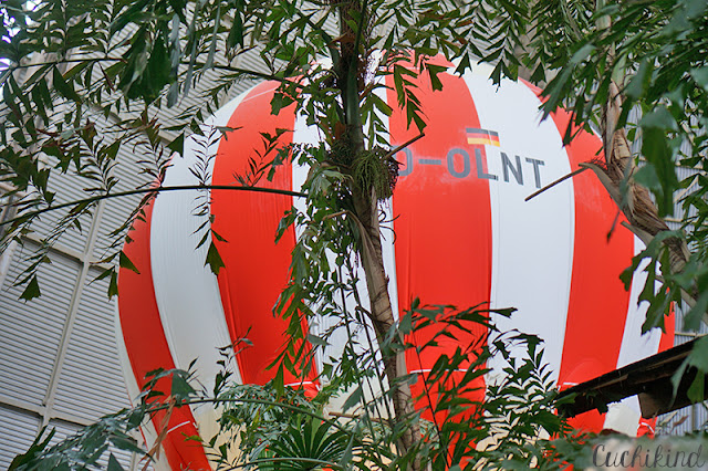 Ballonfahrt im Tropical Islands