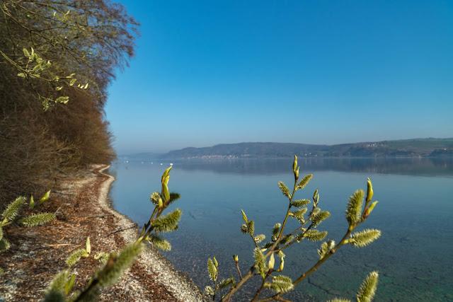 SeeGang Etappe 2 Wilde Tobel und alte Burgen: Von Wallhausen über den Bodanrück nach Bodman-Ludwigshafen | Premiumwanderweg Bodensee Konstanz 06
