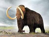 Mamut hayvanı çizimi