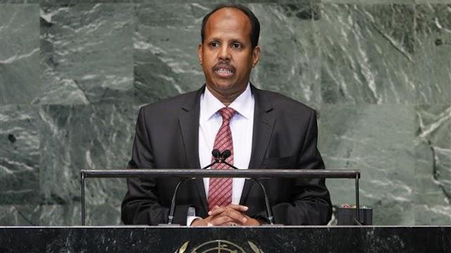 Saudi Arabia mulls military base in Djibouti amid Yemen crisis