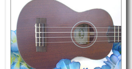 Get your Play Ukulele NOW books
