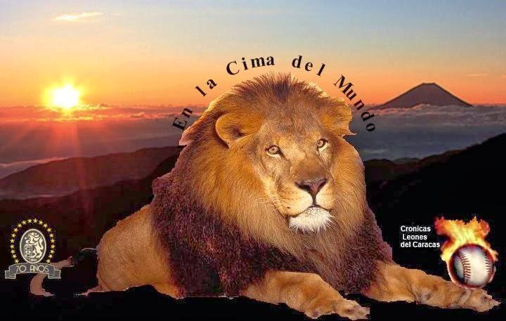CronicasLeones: Imagen El Verdadero Fanatico de Leones del