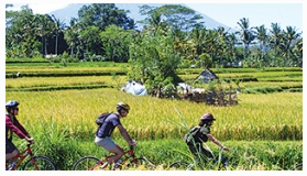 Singgasana Hotels & Resorts Bali By Bike , June, 17 2014