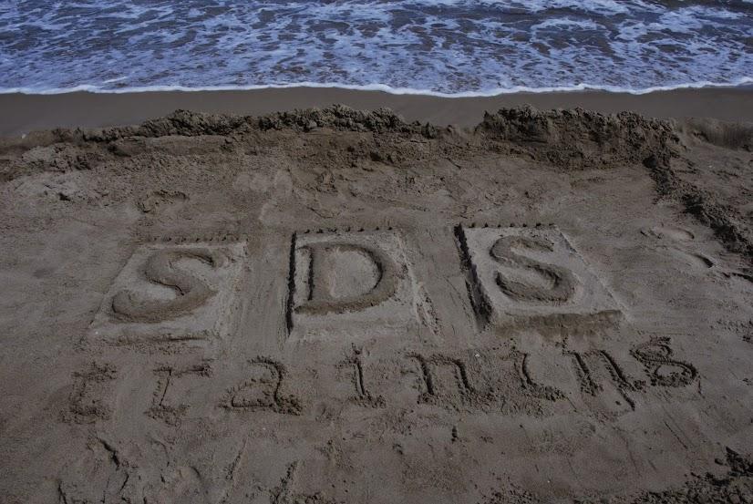Cursos de verano 2017 en SDS training