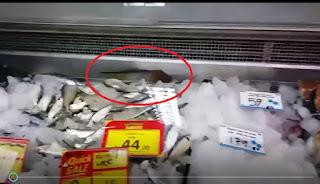 Mouse in Keells Super supermarket goes viral
