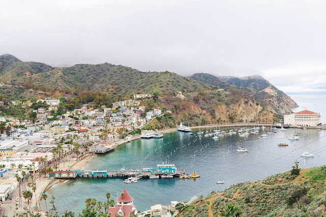 what to do in Catalina, Avalon Bay, Catalina Travel Guide