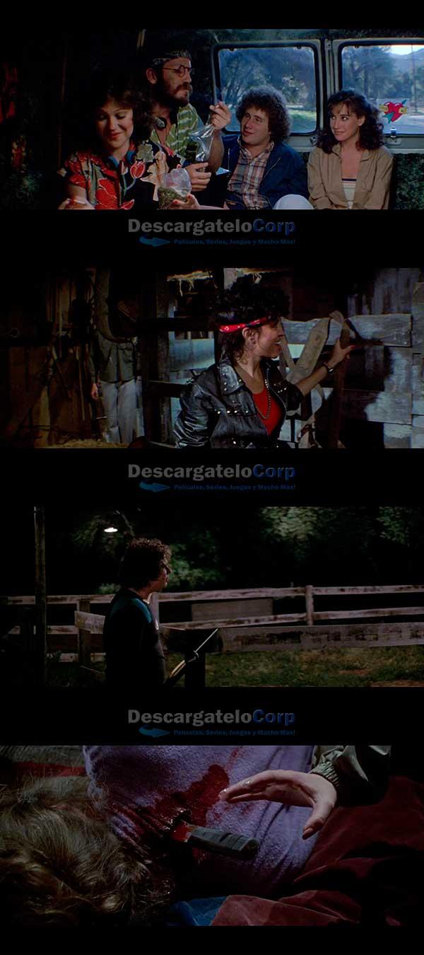 Viernes 13 Parte 3 HD 1080p Español Latino