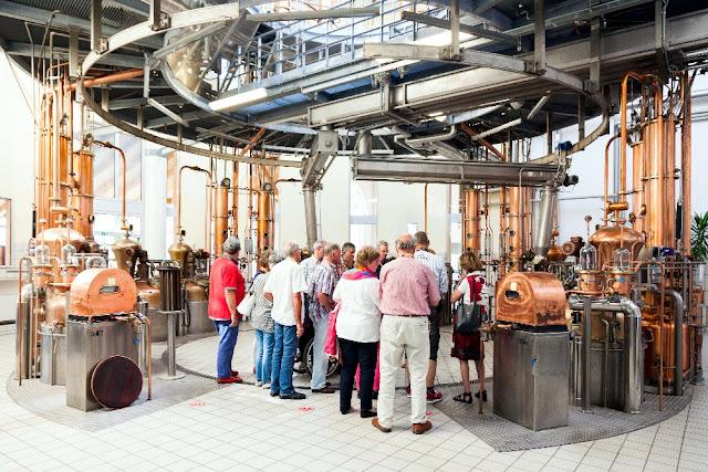 distilleria marzadro grappe visita