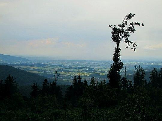 Widok w stronę północną z podejścia na Leskowiec.