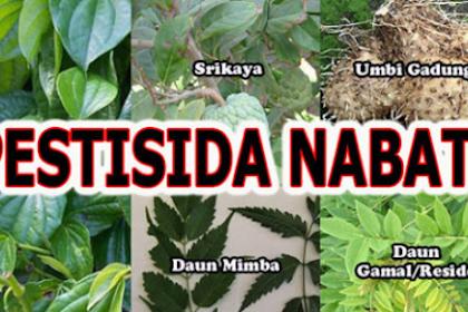 Cara membuat pestisida nabati dengan berbagai macam tanaman
