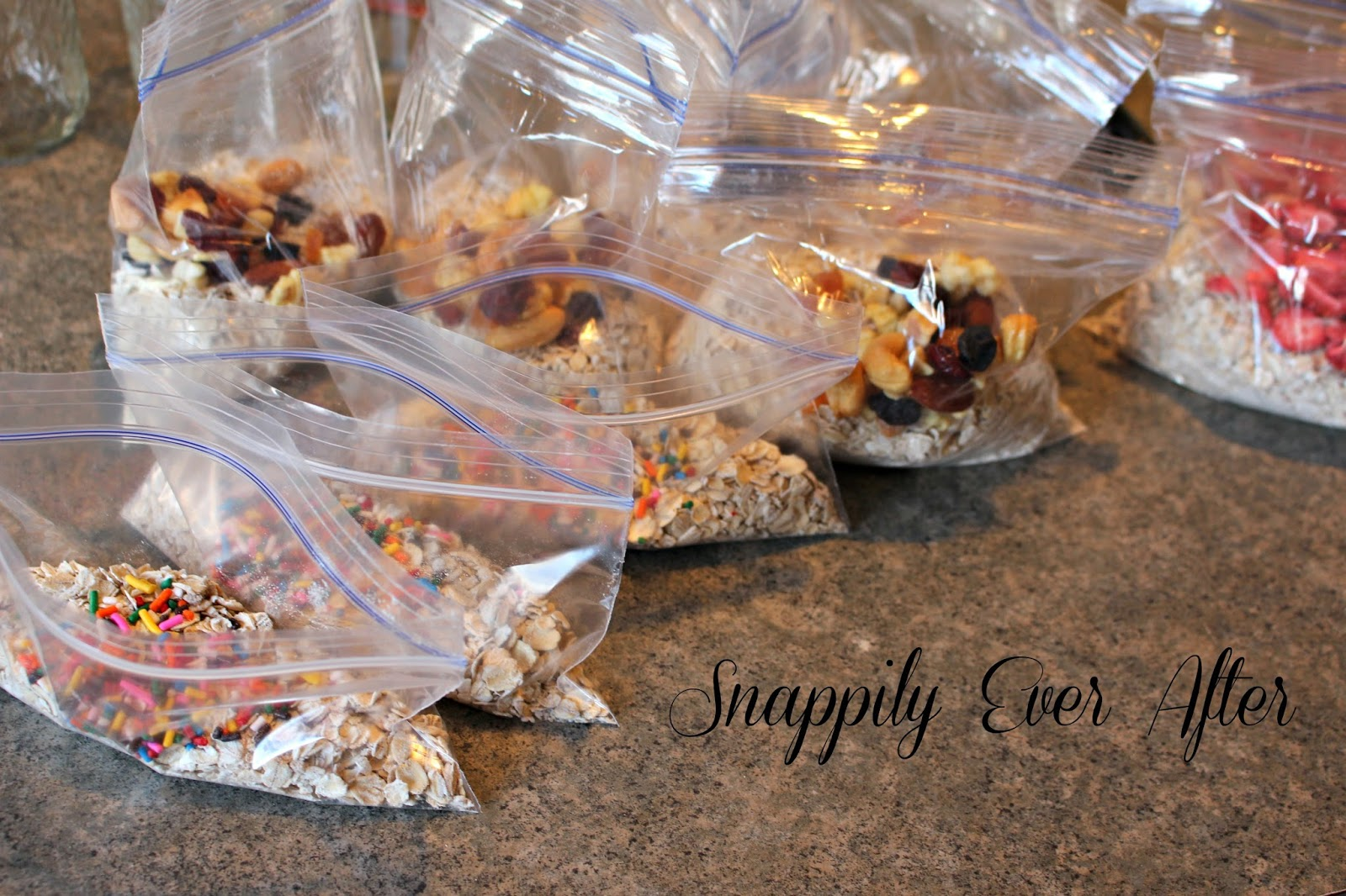 snappily ever after: homemade instant oatmeal with flavor