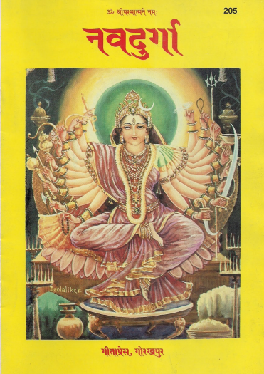 Download nav durga vrat katha in Hindi PDF book