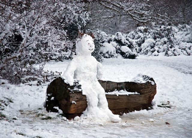 Forest Snow Man HD Wallpapers Download Free