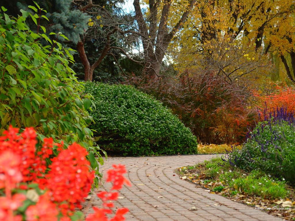 Liana conis blog autumn scene wallpaper hd - Pics of fall scenes ...