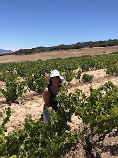 rachel in a sunny vineyard