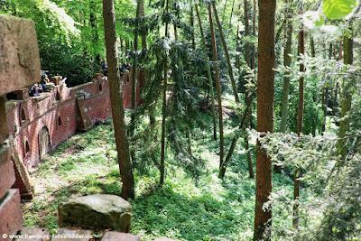 Wolfsgehege im Wildpark Schwarze Berge