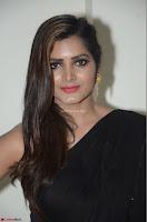 Pavani Reddy in Black Saree Sleeveless Choli ~  Exclusive 45.JPG
