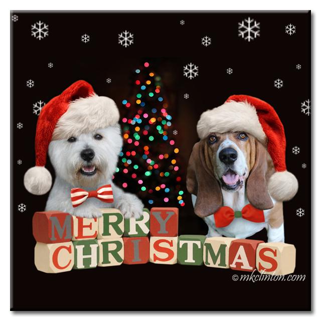 The Bayou Boys wish you a very merry Christmas