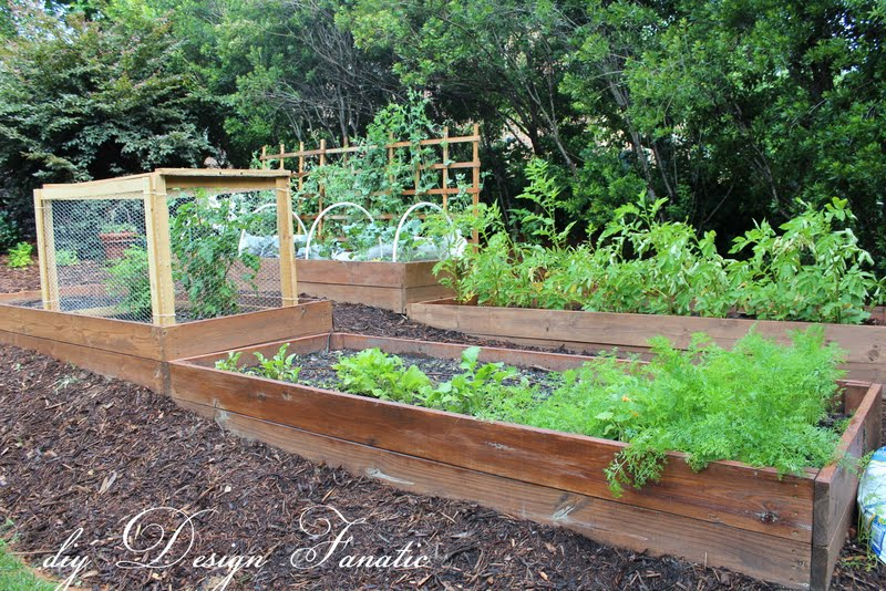 Garden Raised Bed Ideas Diy design fanatic raised bed update raised beds raised beds on a slope vegetable garden building project diydesignfanatic workwithnaturefo