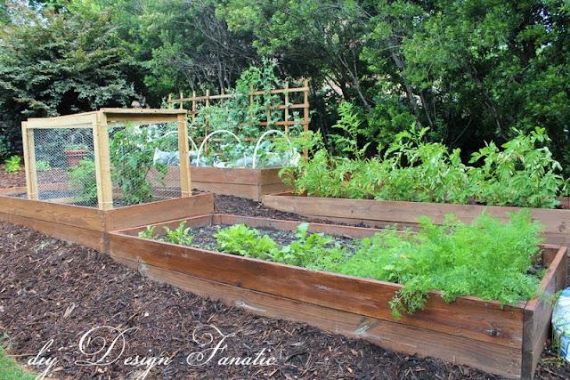 raised beds, raised beds on a slope, vegetable garden, building project, diyDesignFanatic.com