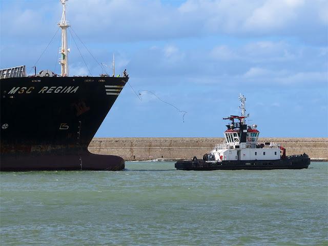 Portacontainer MSC Regina, IMO 9202651, rimorchiatore Francesca Neri, IMO 9239290, porto di Livorno