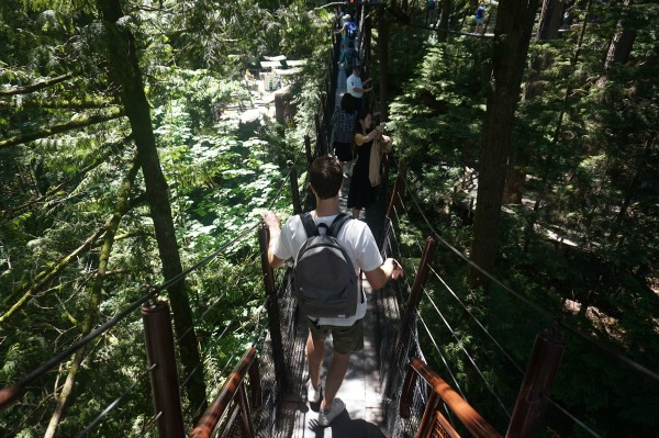 Capilano Tree Top Trek