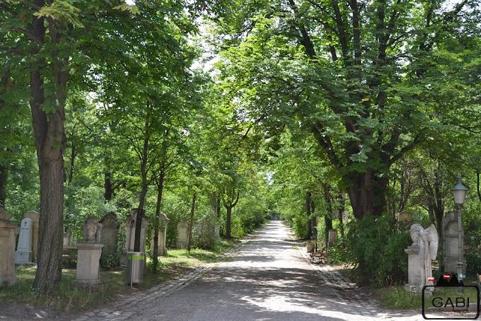 Cmentarz św. Marka i grób Mozarta