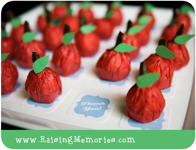 Apple Theme Chocolate Party Favors