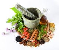 bahan herbal KLG