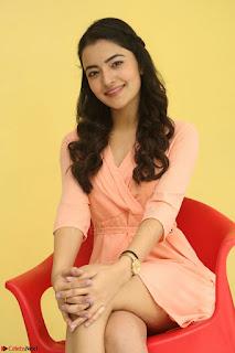 Rukshar Mir in a Peachy Deep Neck Short Dress 035.JPG