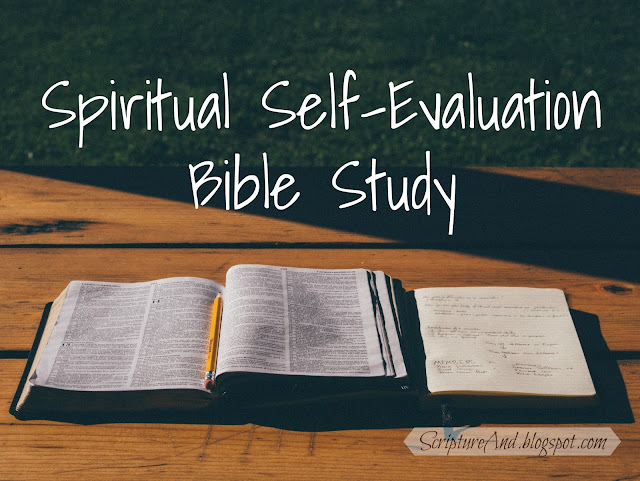 Spiritual Self-Evaluation Bible Study from ScriptureAnd.blogspot.com