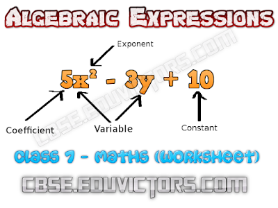 Class 7 - Mathematics - Chapter - Algebraic Expressions (Very Short Questions and Answers) (#cbsenotes)(#eduvictors)