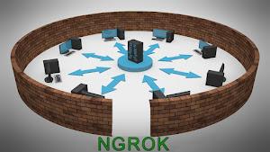 Ngrok exponha o seu localhost