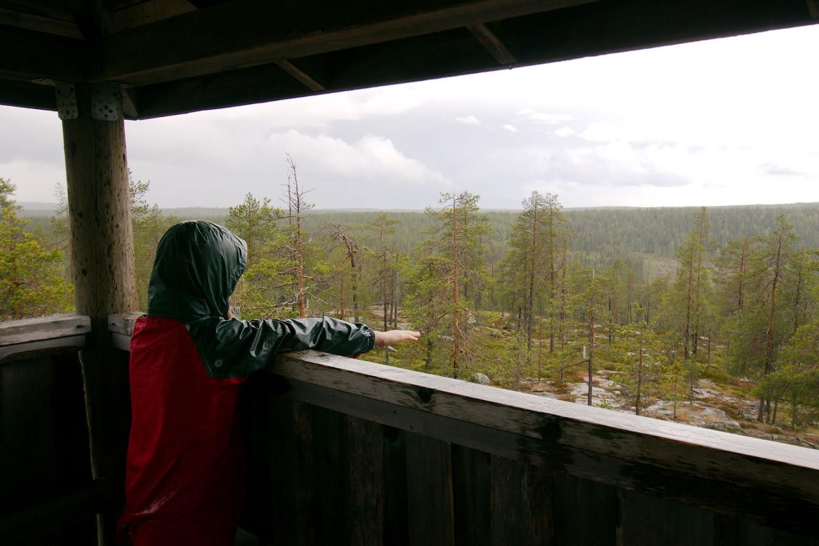Sadepisarat tippuvat kämmenelle luontotornin räystäältä
