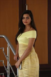 Shipra gaur in V Neck short Yellow Dress ~  054.JPG