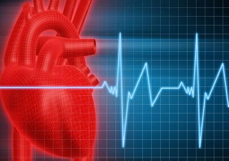 Yang Terjadi Saat Jantung Berhenti Berdetak