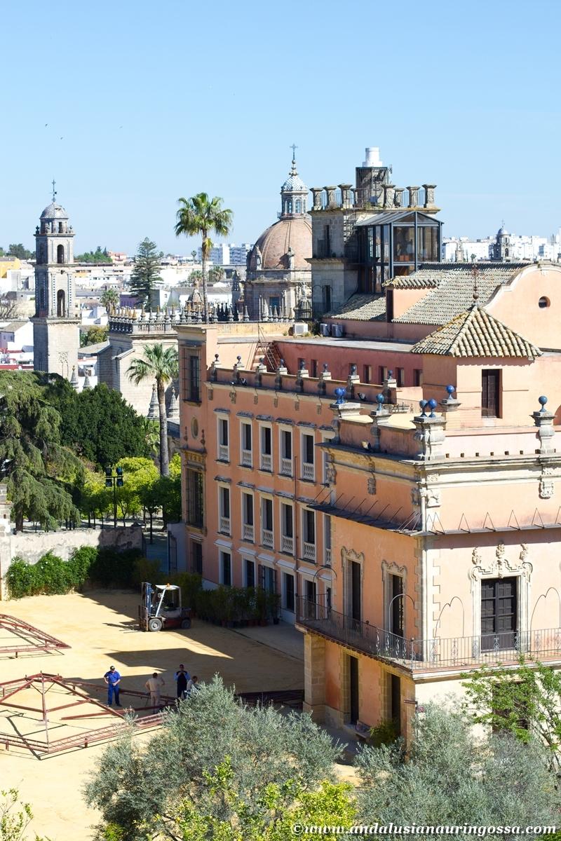 Jerez Alcazar 31