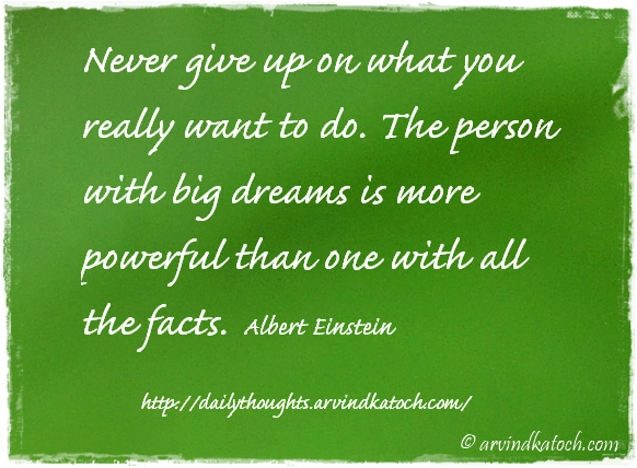 Daily Thought, Motivational, Albert Einstein, Never Give Up