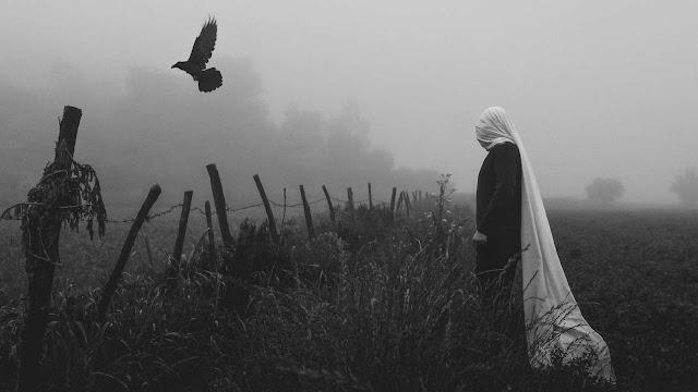 Προφήτες ή κοράκια;