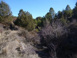 Salida del Arroyo de Valpinoso